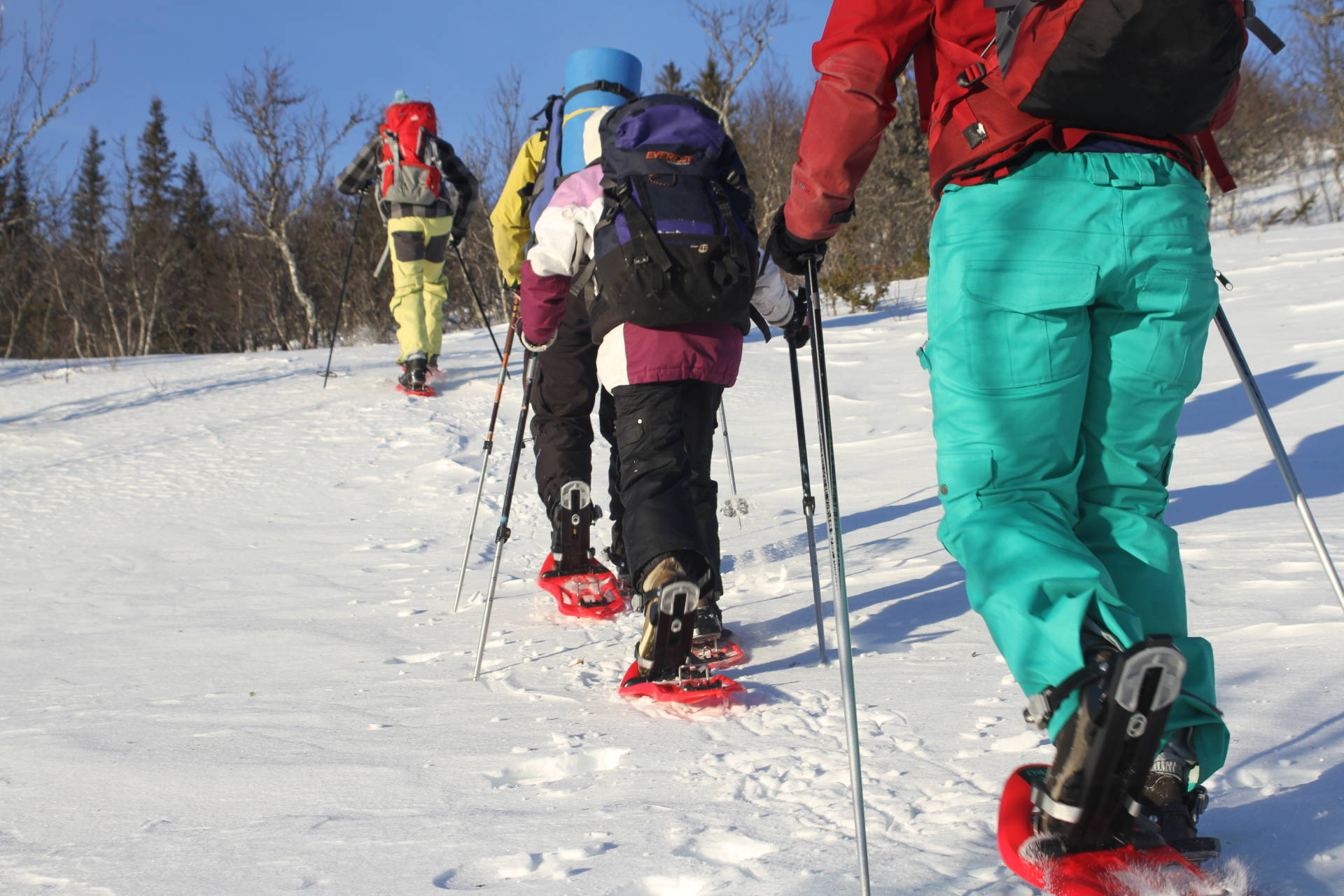 Snowshoeing in Åre mountains