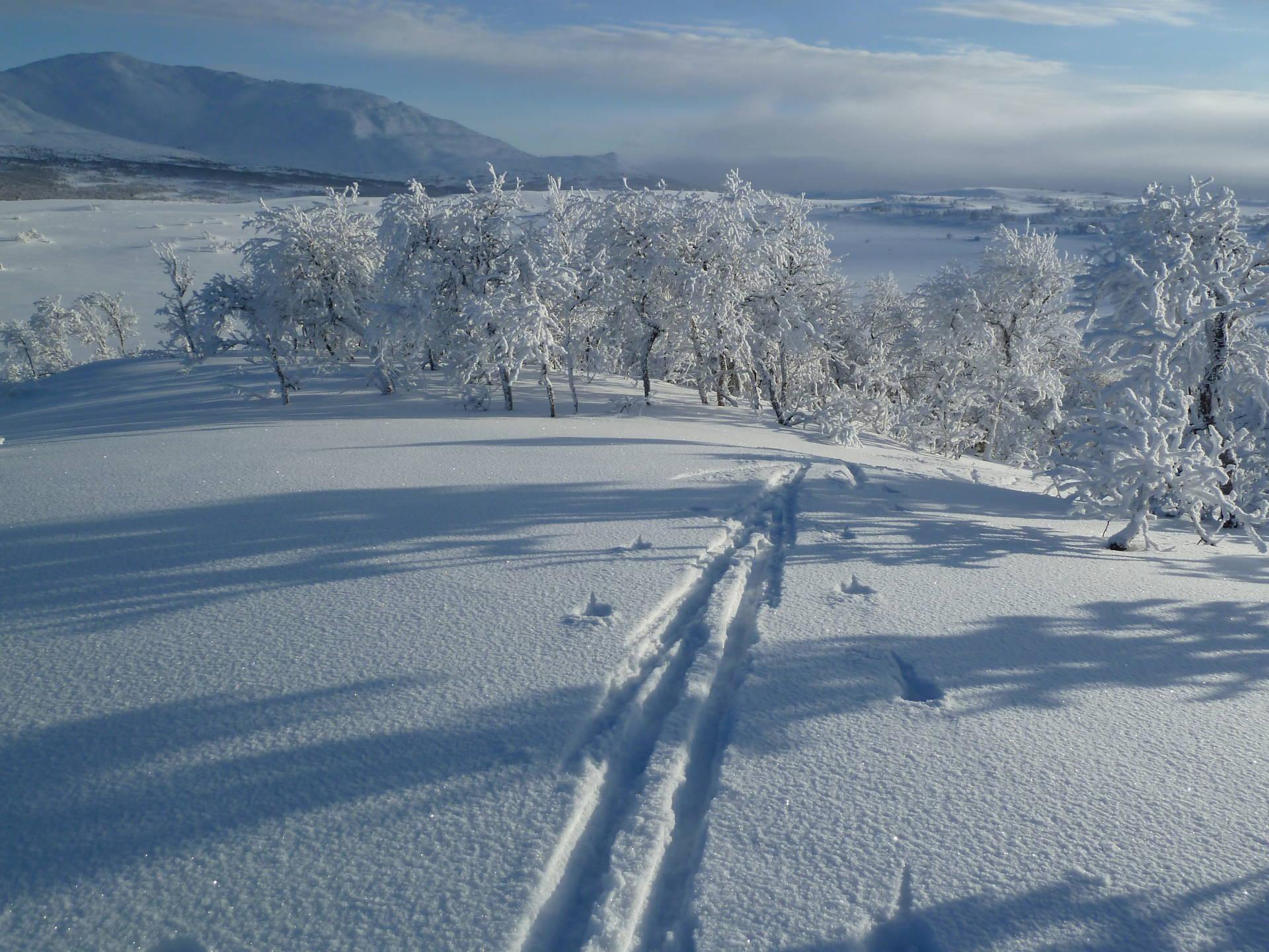 Ski touring in Åre mountains. Ullådalsturen